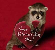 Valentine's Day Raccoon by jkartlife