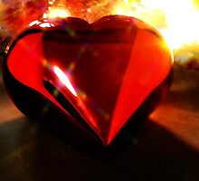 Heart on Fire by Barbara  Brown