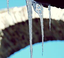 Frozen in time by heinrich