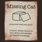 Schrödinger's Missing Cat by BlueShift