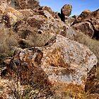 On the Rocks by Vicki Pelham