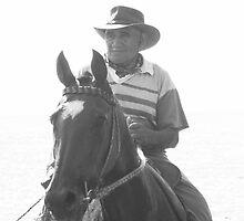 the horse rider by Anne Scantlebury