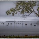 """Frenchman's Bay"" by Bob Adams"
