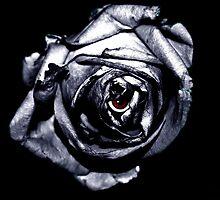 Rose Retina  by Luke Lansdale