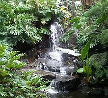 Brisbane Botanic Gardens Waterfall by EleaTiri