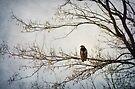 The Watcher by KBritt