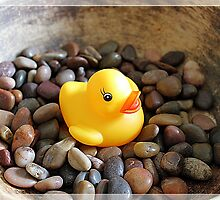 Rubber Ducky Themed Greeting Card by rhschou
