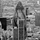 The Gherkin London by SteveHphotos
