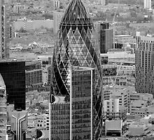 The Gherkin London by SteveHphotos