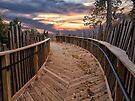 The Boardwalk by Kathy Weaver