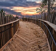 The Boardwalk by Kathy Weaver