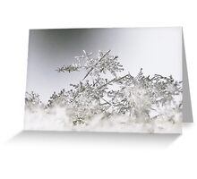 The Fallen Snow Greeting Card