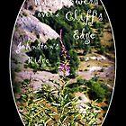 wildflowers over cliff edge Johnston's Ridge oval by Dawna Morton
