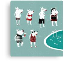 Retro swimsuits Canvas Print