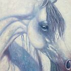 Blue eyed White Mare by Gill Bustamante