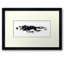 Border Collie in Action Framed Print