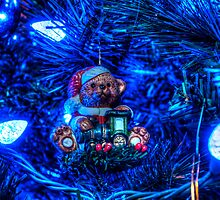 HDR - Blue Lit Bear by Doug Greenwald