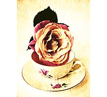 Old Cup & Vintage Rose. Photographic Print