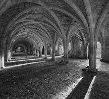 The Cellarium - Fountains Abbey by karl-tkd