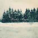 Winter Bliss by sandra arduini