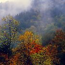 AUTUMN MIST,THE CHIMNEYS by Chuck Wickham