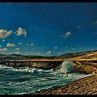 Hawaii Shore by Bill Gorman