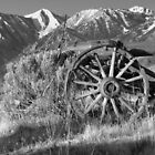 Old Wagon Near Jobs Peak by James Eddy