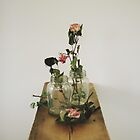 old roses in jars on ironing board by connielovely