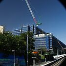 thee cranes ov Brisbane 2013 DAILY TOUR - Day 37 by Craig Dalton
