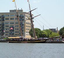 Pride of Baltimore II - Docked on the East Bank by Francis LaLonde