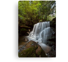 Leura Falls, NSW Canvas Print