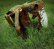 Steel Auto Carcass by Randall Nyhof
