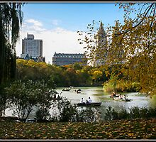 Autumn on The Lake in Central Park by Mikell Herrick