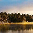 Glowing Treeline by Rick McKee