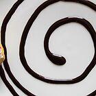 Donut Swirl by Rick McKee