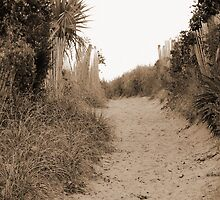 Path To The Beach by Cynthia48