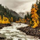 Flowing through Autumn by Mark Kiver