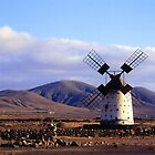 Windmill in a Barren Landscape by Francis Drake