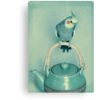 Time For Tweet Canvas Print