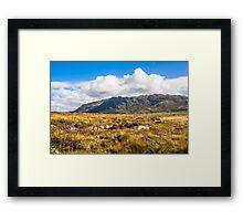 View over the moss of Mointeach Mhor to Sgurr an t Sasunnnaich Framed Print
