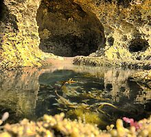 Sorrento = Rockpools at St.Pauls (2) by Larry Lingard-Davis