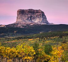 Chief Mountain Sunrise - Glacier National Park by Mark Kiver