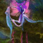 Dancing Auroras - Pink Fairy by Aimee Stewart