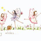 Fairy Wishes by Kate Garrett
