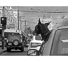 Afternoon traffic reports on WOOF- FM.  Photographic Print