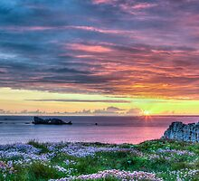 Sunset in France by Joshua McDonough