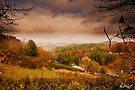 Yancey County, North Carolina by Paul Wolf