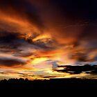 sunset  by Cara Johnson