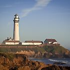 Pigeon Point Lighthouse, Highway 1 - California by mcdonojj