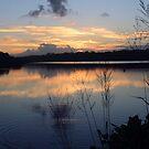 reflecting at  the creek ... by gail woodbury